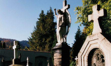 """<span class=""""entry-title-primary"""">Der Alte Friedhof an der Stadtmauer</span> <span class=""""entry-subtitle"""">Ein Kleinod in der Füssener Altstadt </span>"""