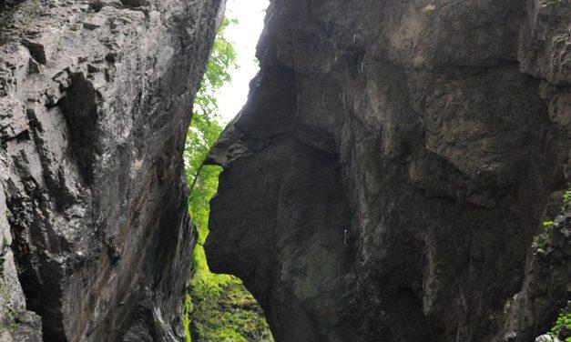 Die tiefste Felsenschlucht Mitteleuropas