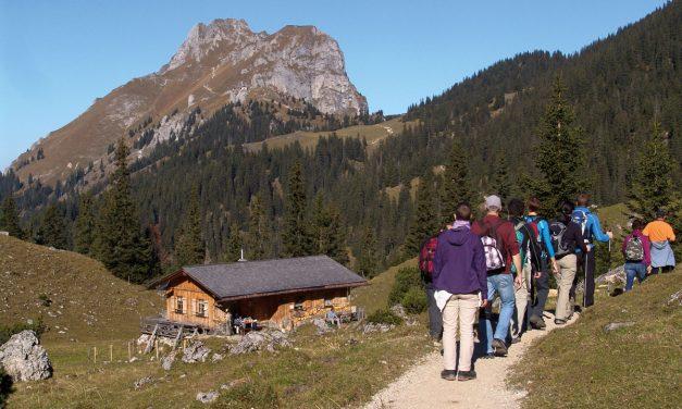 Der GEO-Pfad zeigt dem Wanderer auf einfache Weise die Entstehung der Alpen